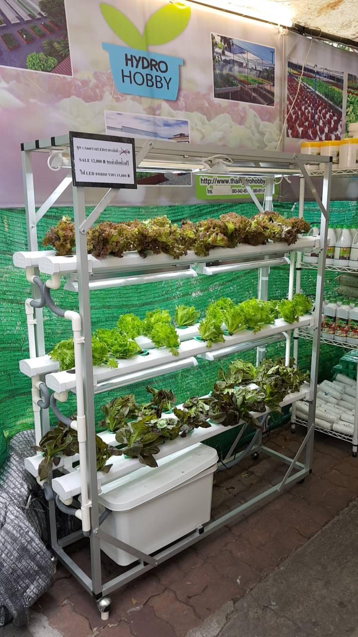 ชุดปลูกผักไฮโดรโปนิกส์ ขนาด 1.5 เมตร 6 รางปลูก พร้อมไฟ LED ปลูกได้ 54 ต้น