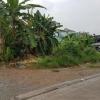 ขายที่ดิน ประชาชื่น แยกพงษ์เพชร นนทบุรี