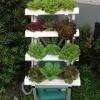 ชุดปลูกผักไฮโดรโปนิกส์แบบล้อเลื่อนขั้นบันไดขนาด 50 cm. จำนวน 4 รางปลูก(ปลูกได้ 12 ต้น)