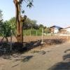 ขายที่ดินพร้อมปลูกบ้าน พุทธมณฑลสาย1 ซอย49 สวนผัก39 ซอยทุ่งมังกร 17 เนื้อที่169 ตรว ที่ดินทรงสี่เหลี่ยมผืนผ้า