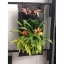 Flora Bag™ (สวนแนวตั้งแบบกระเป๋า-Green wall bag) thumbnail 1