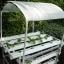 ชุดปลูกผักไฮโดรโปนิกส์ แบบตั้งโต๊ะ ขนาด 1 m 4 รางปลูก+2 รางอนุบาล thumbnail 1