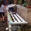 ชุดปลูกผักไฮโดรโปนิกส์ แบบตั้งโต๊ะ ขนาด 2 m. 4 รางปลูก+2รางอนุบาล thumbnail 3