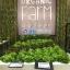 ชุดปลูกผักไฮโดรโปรนิกส์ แบบ ตั้งโต๊ะ ขนาด 3 เมตร จำนวน 8 รางปลูก thumbnail 4