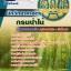 #เก็งแนวข้อสอบนักวิทยาศาสตร์ กรมป่าไม้ thumbnail 1