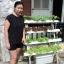 ชุดปลูกผักไฮโดรโปนิกส์ แบบขั้นบันได ขนาด 1 เมตร 4 รางปลูก thumbnail 2
