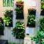 Flora Bag™ (สวนแนวตั้งแบบกระเป๋า-Green wall bag) thumbnail 5