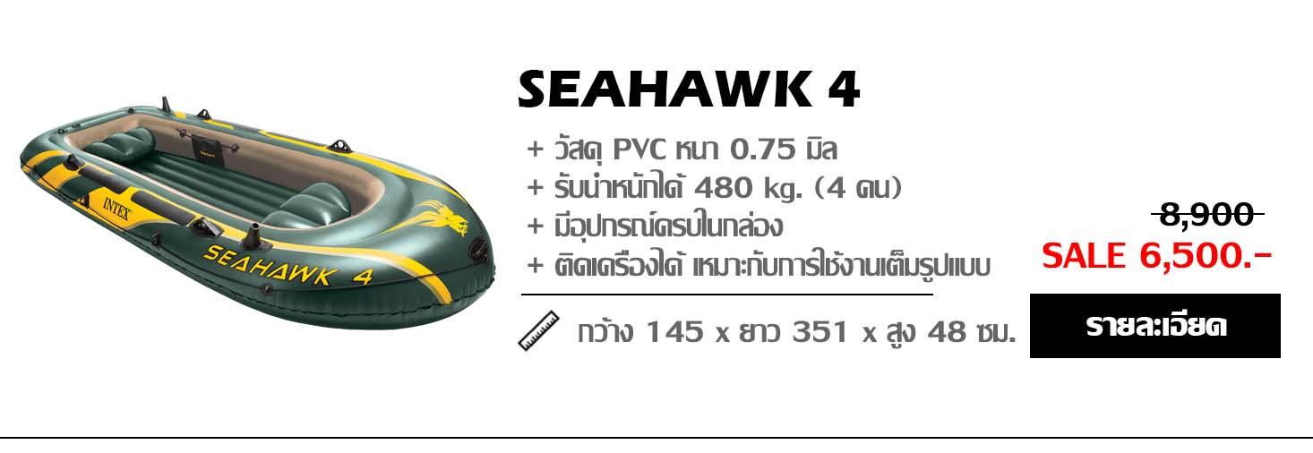 เรือยาง seahawk 4