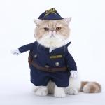 ชุดตำรวจ